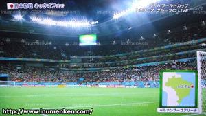 tv_07((サッカーW杯「日本VSコートジボワール」スタジアム
