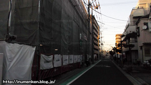 n_s_377(散歩_(足立区・南花畑)