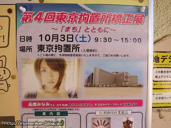 n_p_108(東京拘置所矯正展でAKB高橋みなみ