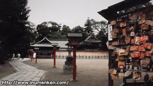 m_k_08(NONFIX「オタクと町が萌えた夏」らき☆すた_鷲宮神社内