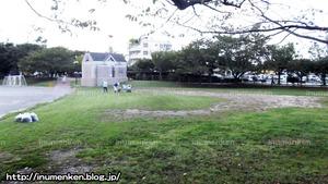 sp_04_(総合スポーツセンター_(足立区・東保木間