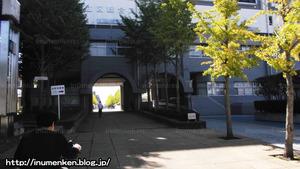n_s_323(総合スポーツセンター_(足立区・東保木間)