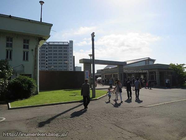 n_p_115(東京拘置所矯正展でAKB高橋みなみ