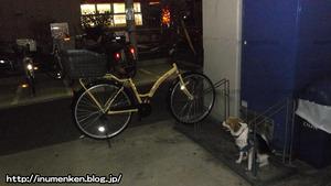 n_n_115スーパーマーケット「OK」自転車置き場(足立区・一ツ家)