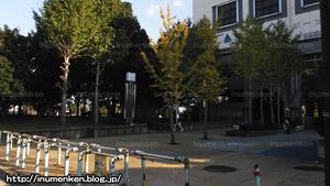 sp_13(総合スポーツセンター_足立区・東保木間)
