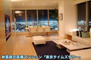 n_st_42(秋葉原の高層マンション「東京タイムズタワーの中からの夜景