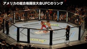n_s_353(総合格闘技大会UFCのリング「オクタゴン」