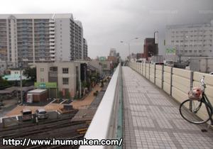 n_n_71(西新井・歩道橋_上
