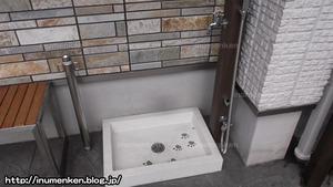 n_s_484(はなはた動物病院_犬のシャワー(足立区・保木間)