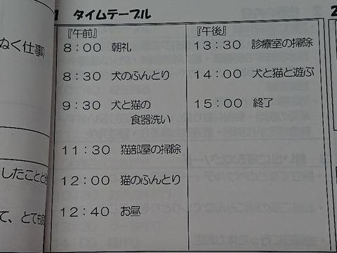 DSC_5306_copy_800x600