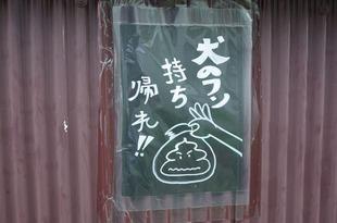 sonohun (3)