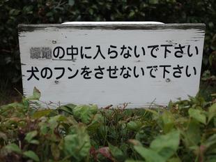 douhuki (1)