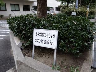 morinomiya (2)