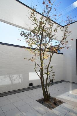 那須野が原のコートハウス (2)