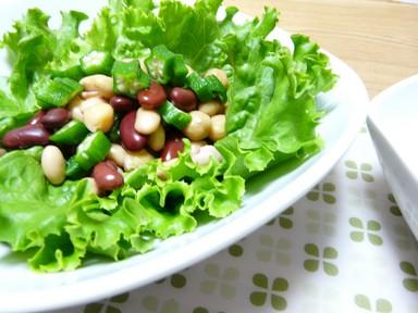 オクラとサラダ豆のサラダ