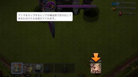 リトル ノア (47)