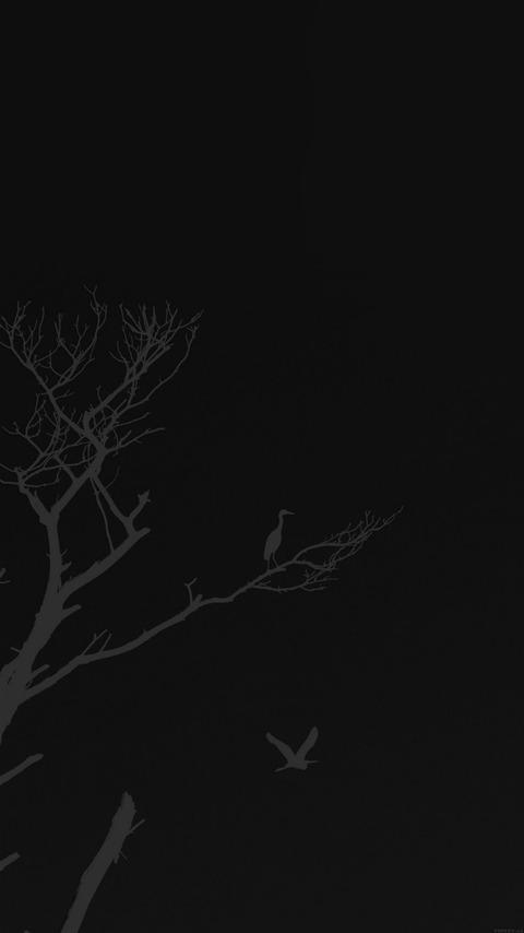 12192_750x1334_iPhone6_6s_壁紙