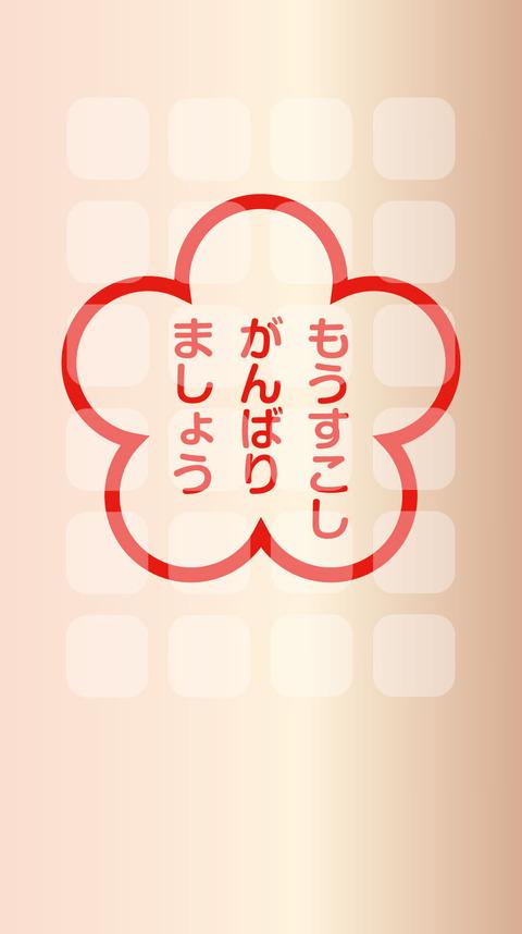 91_wallpaper_890x1590_iPhone6-6s7