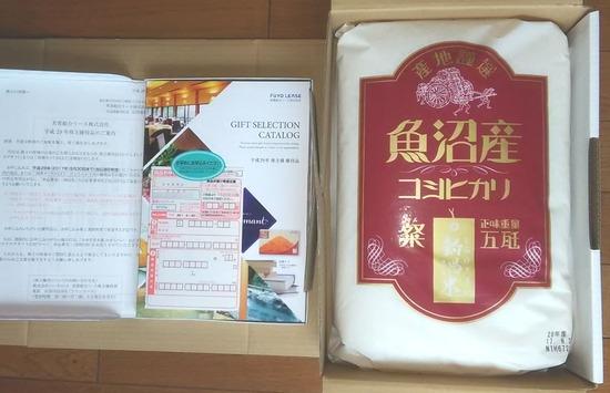 株主優待:M&Aセンター 芙蓉リース