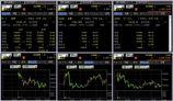 IPO 新規公開株 IPO初値状況1