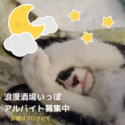It's a surpriseのコピー5