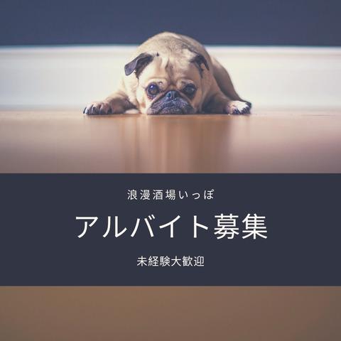 It's a surpriseのコピー4