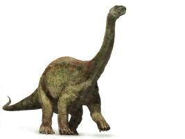 ArgentinosaurusPicture