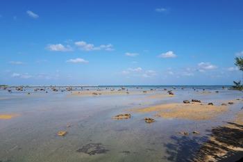 佐和田の浜の奇岩