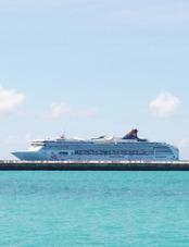 クルーズ船 (787x1024)