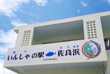 13伊良部漁協 (1024x693)