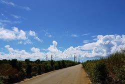 03牧山への農道  (910x615)