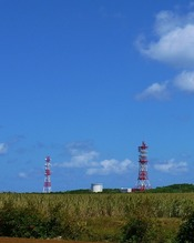 牧山の鉄塔 (953x1024)