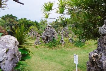 石庭 (1280x863)