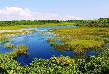 02池間湿原 (1024x692)