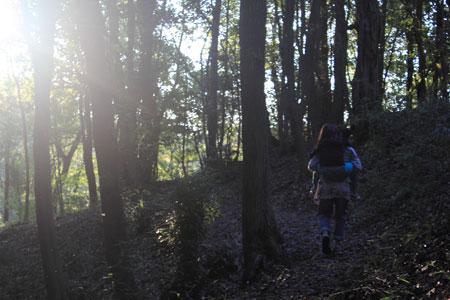 小春日和vol.471 森へ行きたいのはどちらかというと親