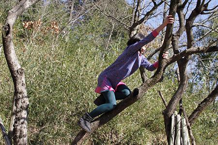 小春日和vol.528 木登り