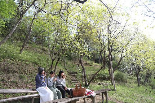 小春日和vol.681 おにぎりピクニック