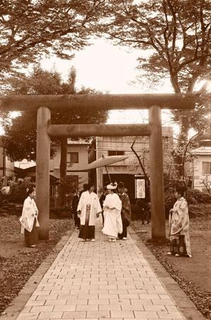 Yamagatasepia