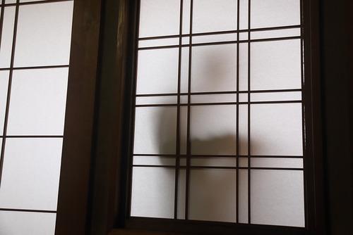 小春日和vol.613  お年玉の正しい数え方