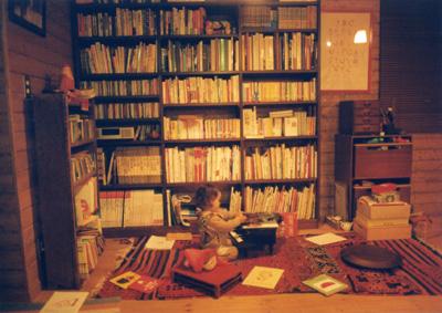 Bookshell2