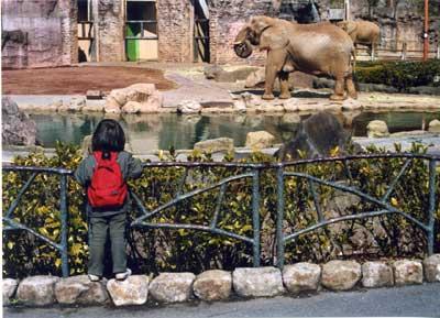 小春日和vol.146 多摩動物園に行きました。