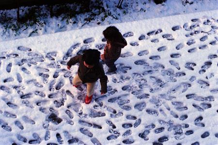 小春日和Vol.242 雪の日の足跡