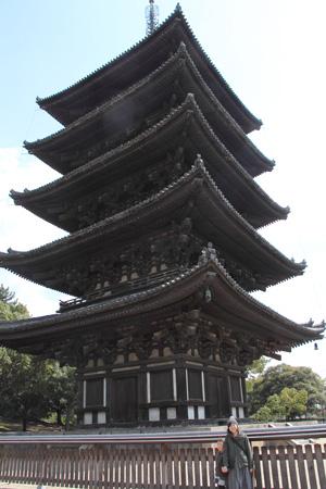 小春日和vol.400 奈良公園満喫
