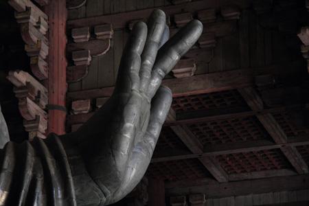 小春日和vol.401 東大寺大仏殿