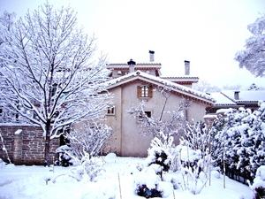 雪ガーデン2010
