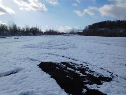 水仙の場所 20日朝には雪が DSCN9030 -