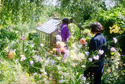 庭のベラとアルフィー
