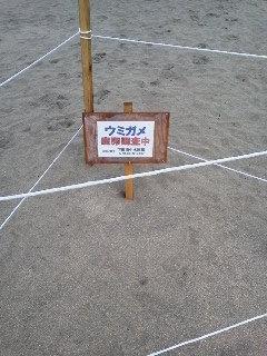 f4faadaa.jpg