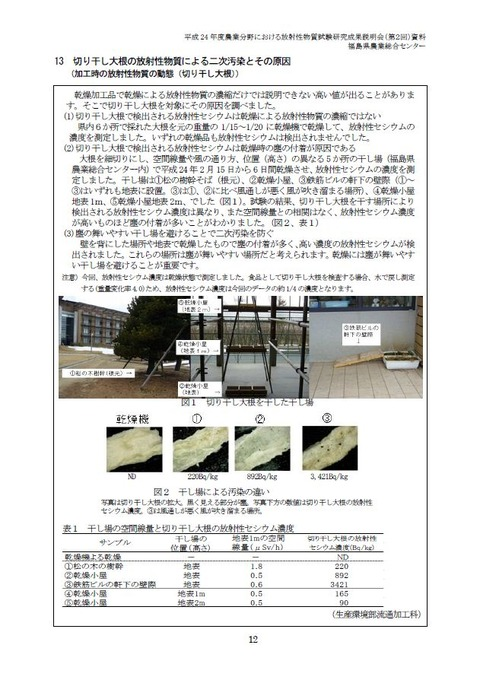 20121101_daikon