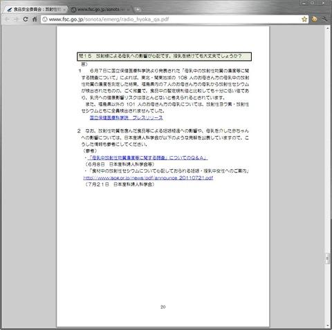 20110813_fsc20